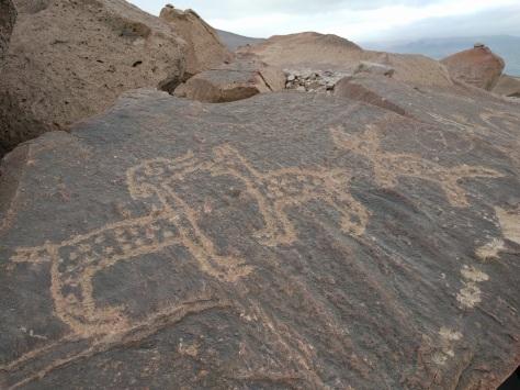 Petroglyphs at Toro Muerto