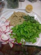 Radishes, snap peas, herbs, quinoa!